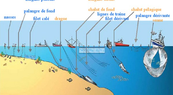 Les particularités à la pêche nationale à la période dhiver